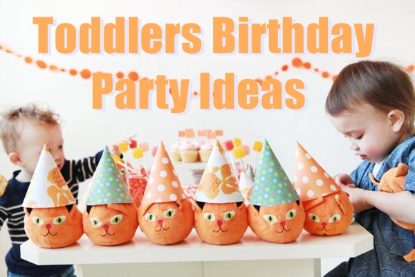 toddlers birthday party ideas from real experience birthday inspire