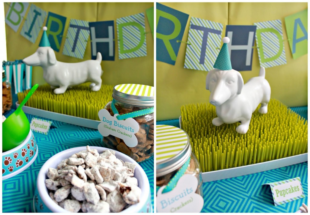 Dog birthday party themes 1024x710