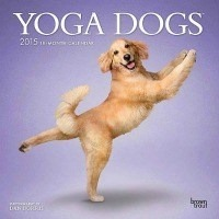 The Seniors Yoga DVD for Parents