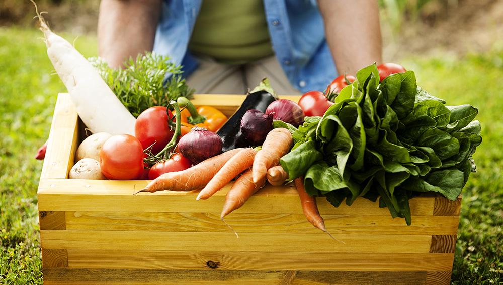 Food so natural and organic