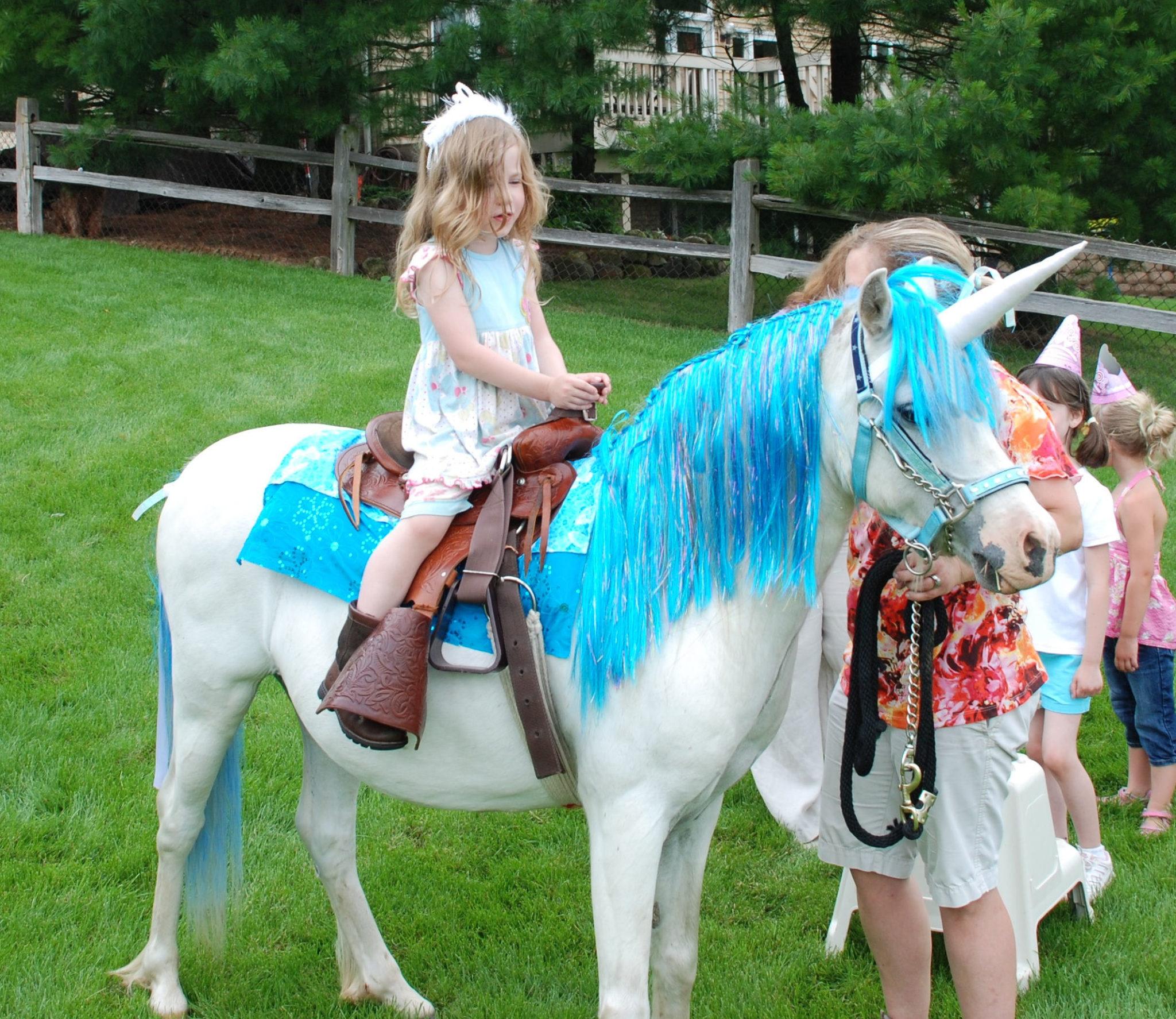 Horses Toys For Girls Birthdays : Mystical unicorn birthday party ideas for kids