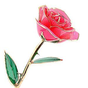 24-carat gold dipped rose