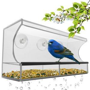Nature's Hangout Bird Feeder