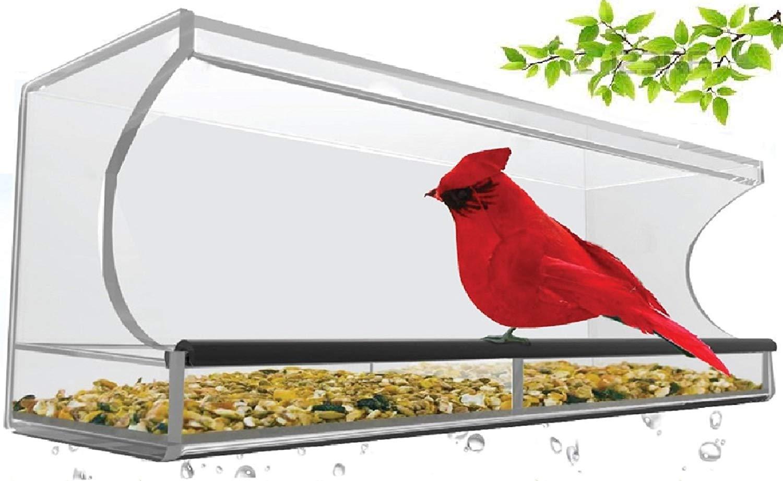 Superior large acrylic window bird feeder